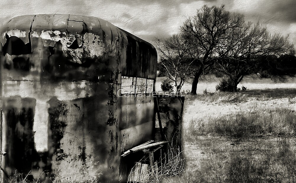 Out To Pasture 2 ( BoneYard Series ) by Carla Jensen