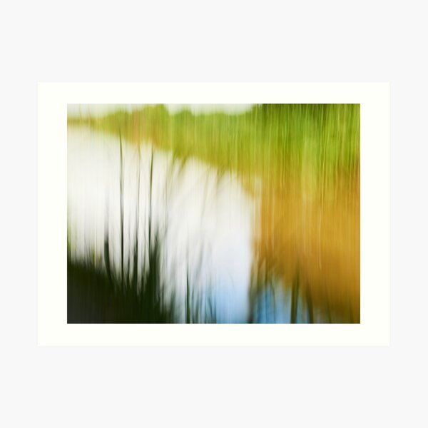 Bude Canal Reeds Two Art Print