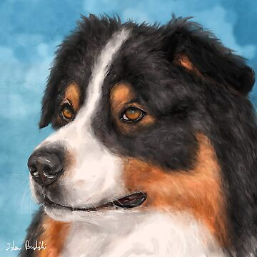 Painting of a Gorgeous Australian Shepherd by ibadishi