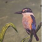 New Zealand Kingfisher, Painting by Vic Potter by Vic Potter