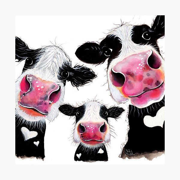 CoW PRiNT, ANiMaL PRiNT ' THe NoSeY FaMiLY ' BY SHiRLeY MacARTHuR Photographic Print