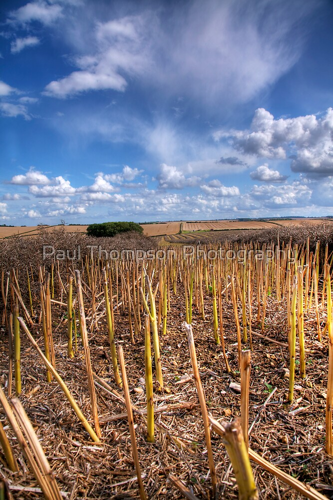 Lincolnshire Wolds 2 by Paul Thompson Photography