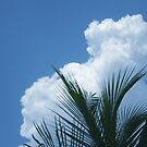 Palms & Clouds by karenkirkham