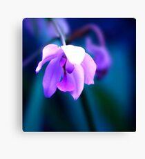 Colour Of Life XXVIII [iPad case / Phone case / Laptop Sleeve / Print / Clothing / Decor] Canvas Print