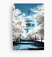Capital Building Canvas Print