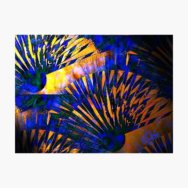 Fans of Blue and Copper Photographic Print