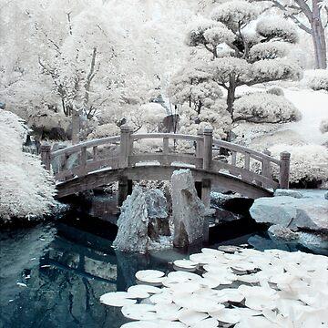 Japanese Garden by PixelsOfTheMind