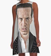 Scott A-Line Dress
