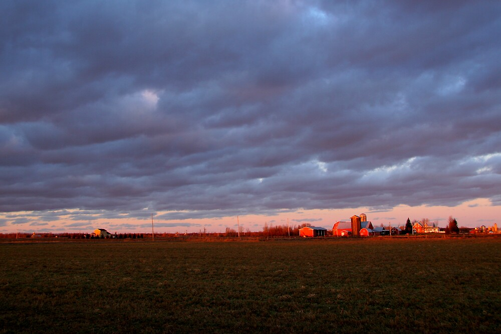Little Red Farm by Todd Weeks