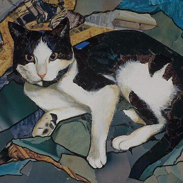 Bills the cat by bournemonkey