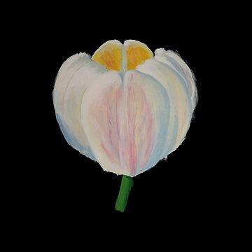 Tulip by skiffthug