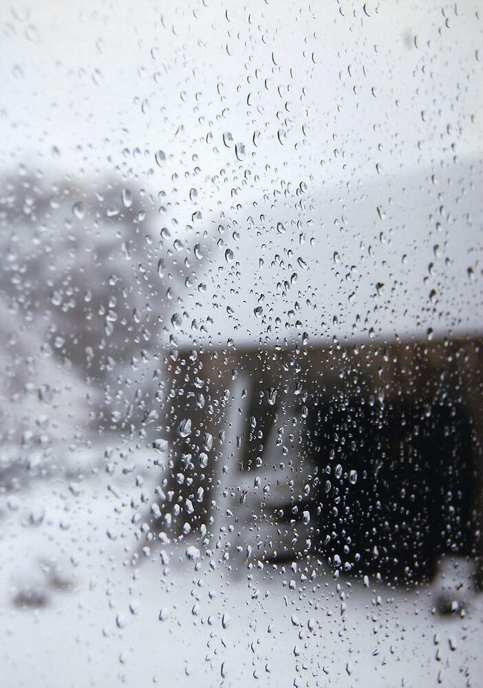 Winter 07 by Steven Squizzero