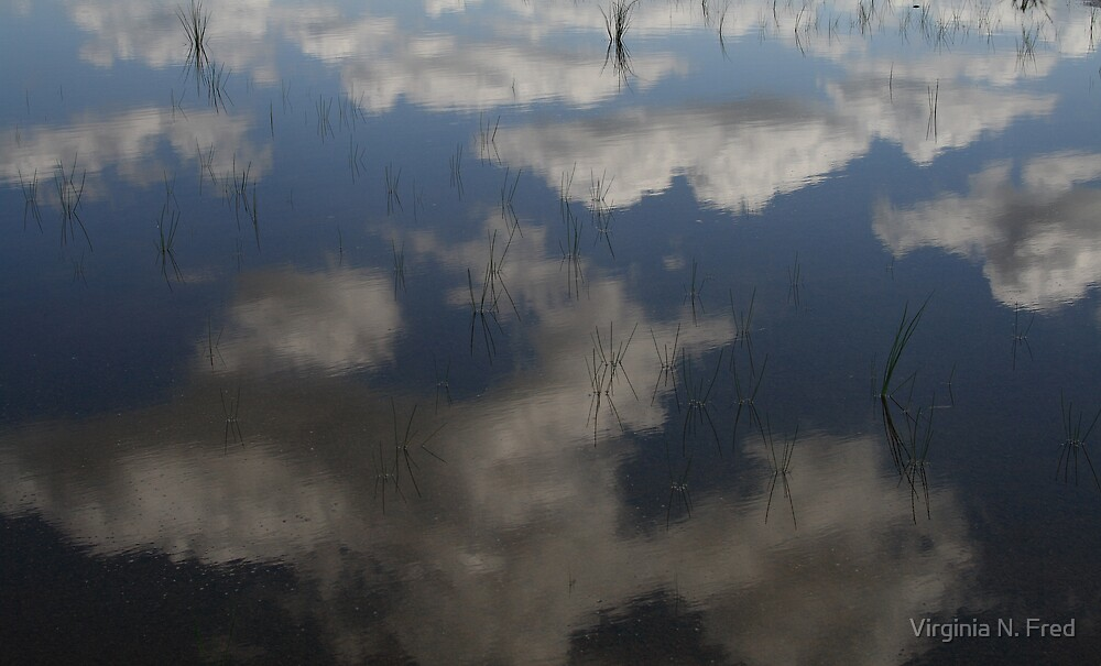 Reflections of the Sky by Virginia N. Fred