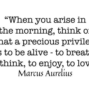 Marcus Aurelius Quote by baileyvannatta