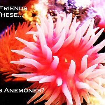 Friend or Foe? by C-Joy