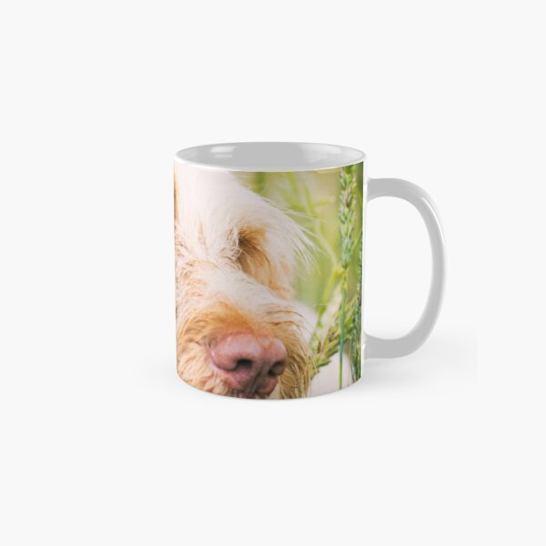 I look for you in every crowd Spinone Classic Mug