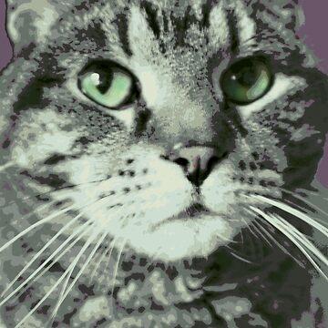 Feed the Kitty by C-Joy