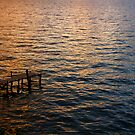 Sunset Ripples by HeatherEllis