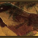 The Bird by Kathy Nairn