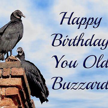 Happy Birthday You Old Buzzard by carolina1