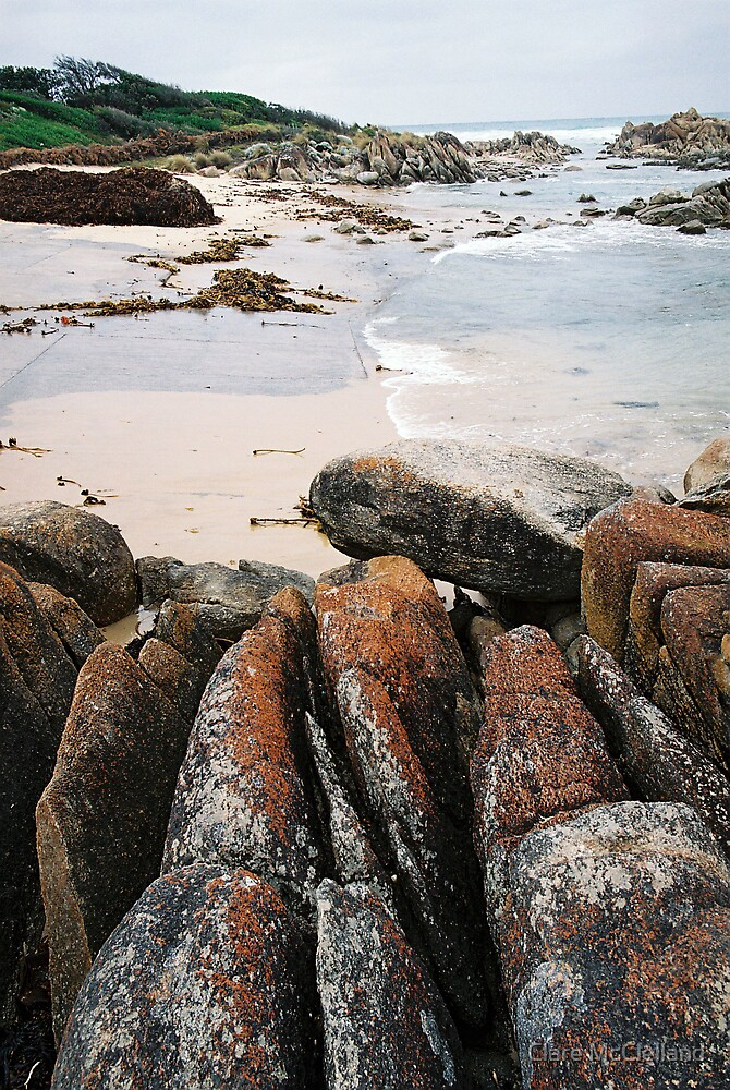 coastal elements 2 by Clare McClelland