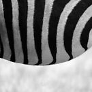 Stripes by HeatherEllis