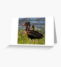 Lake de Soto Ducks Greeting Card