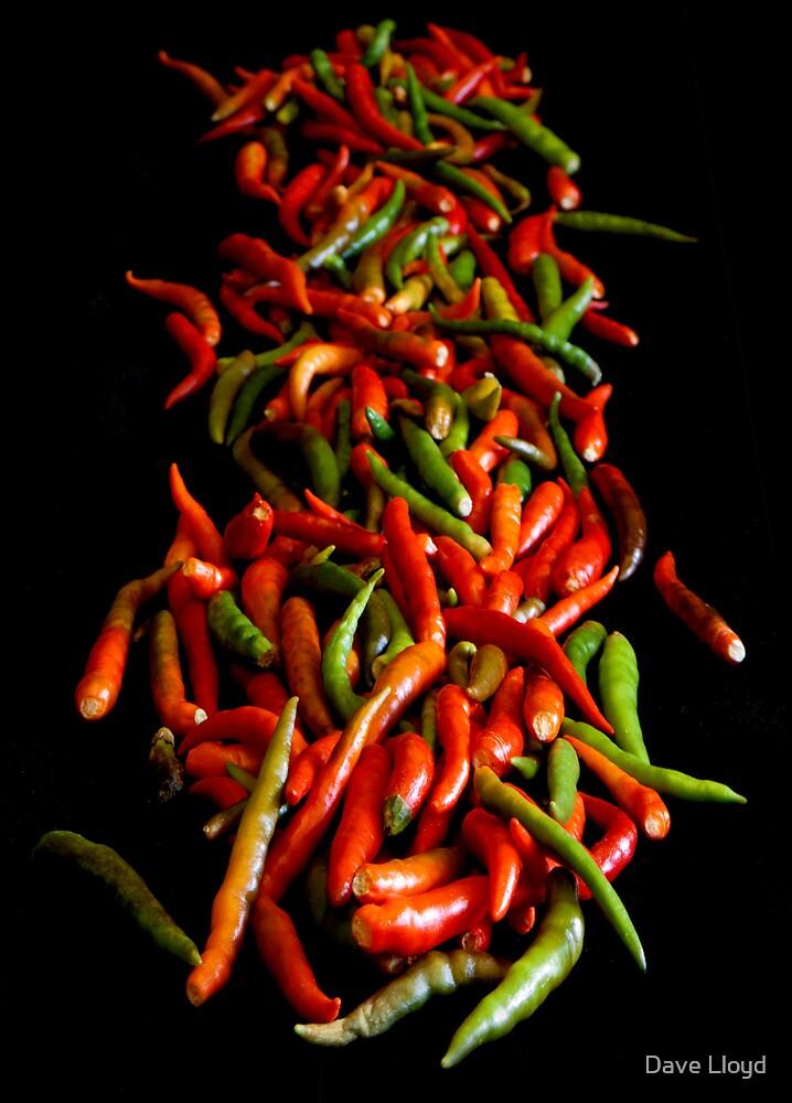 Chili On Black by Dave Lloyd