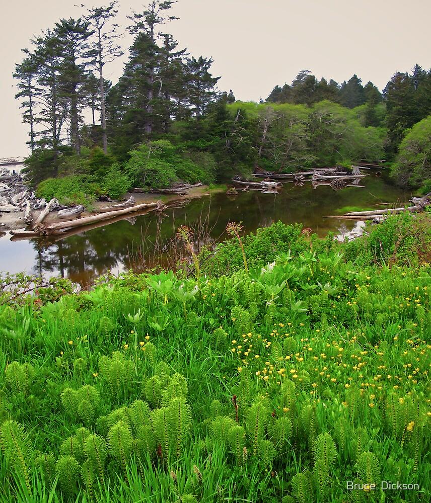 estuary by Bruce  Dickson