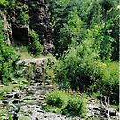 Spearfish Canyon (Vertical) by Essenique