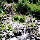 Spearfish Canyon (Horizontal) by Essenique