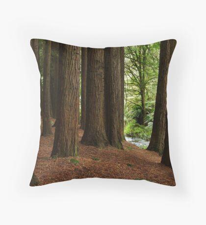Californian Redwoods, Otway Ranges,Victoria Throw Pillow