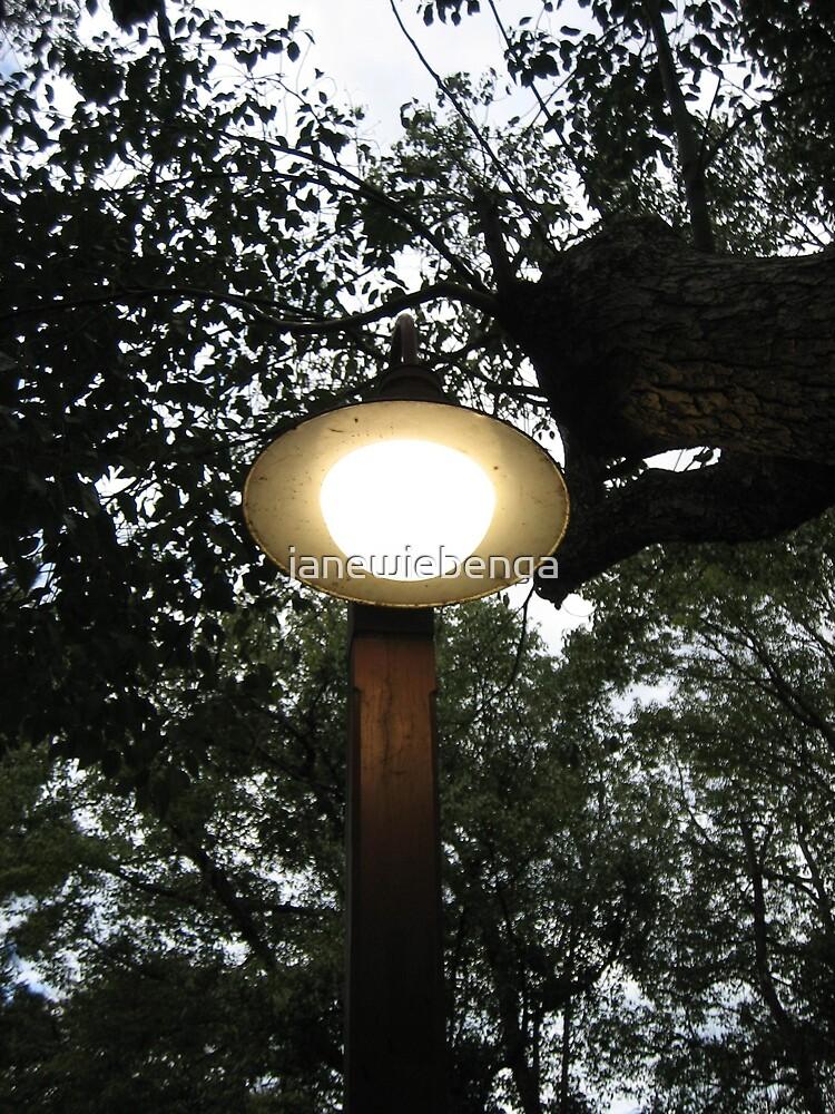 The Lamp Light by janewiebenga