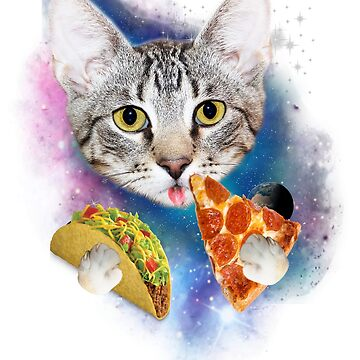 Funny Galaxy Cat Shirt | Space Cat Eat Pizza and Taco Shirt by HallelujahTees