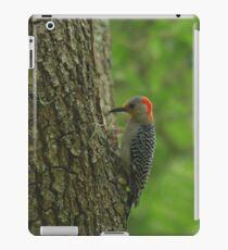 Red-bellied woodpecker iPad Case/Skin