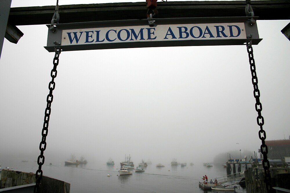 Welcome Aboard by theflashbulb