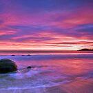 Moeraki Boulders Sunrise by Darren Newbery