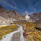 White Island Volcano by Darren Newbery