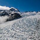 Franz Joseph Glacier, New Zealand by Darren Newbery