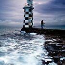 The Light Catcher by Ken Wright