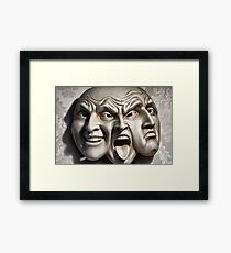 Facetious Framed Print