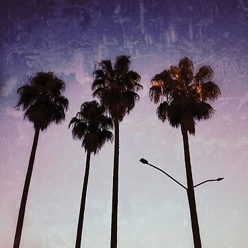 Palm trees at sunset by Yomanow