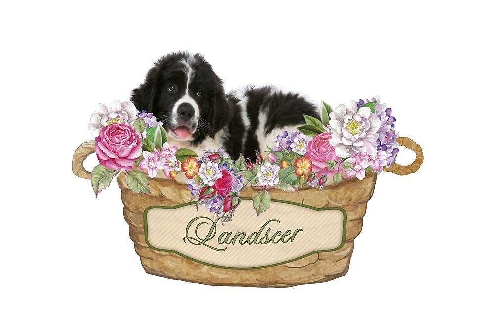 Landseer Puppy by Christine Mullis