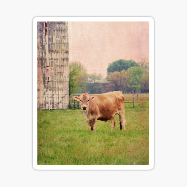 Jersey Rural Dream Sticker
