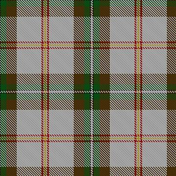 Saskatchewan Dress Tartan by IMPACTEES