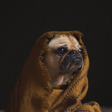The Comfy Pug by wesleytopia
