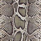 Faux Boa Constrictor Snake Skin Design by Digitalbcon