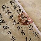 Silk Book by Darren Newbery