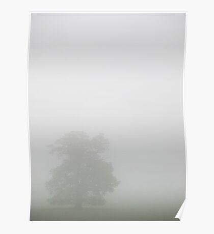 Windsor Mist Poster