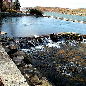 Giant springs 3 by Borror